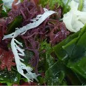Mix Seaweed Salad.png